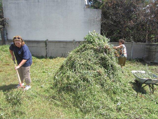haystacks-1